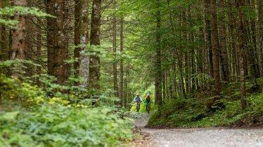 Auf der Mountainbike Tour rund um die Guffertspitze., © Erwin Haiden