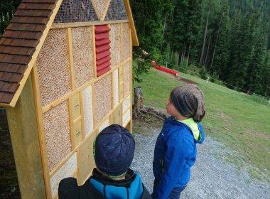 insektenhotel-walk-of-science-sommerberg-fendels-(c)-tirol-werbung—julia-koenig