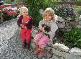 Hofkatzen am Kinderbauernhof Albeineler, © Urlaub am Bauernhof