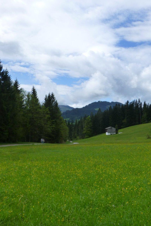 Zwischen St. Johann und Going
