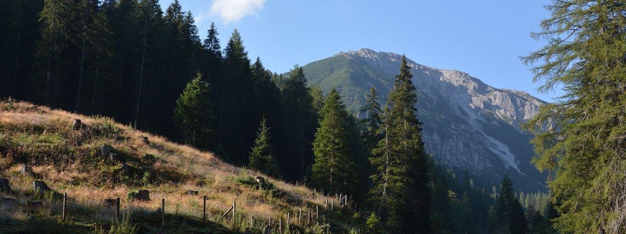Mountainbiken im Gschnitztal, © Tirol Werbung