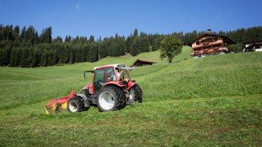 Flecklhof in Hopfgarten, © Tirol Werbung/Lisa Hörterer