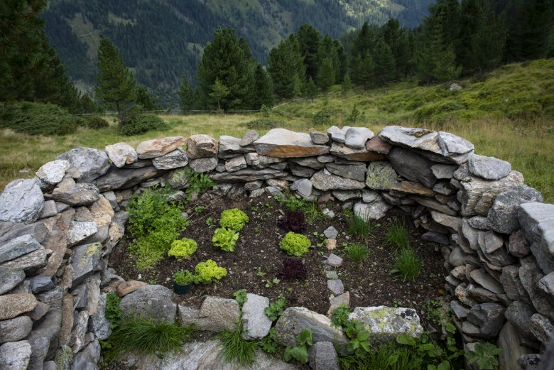 Sarahs selbstgebauter Kräutergarten.