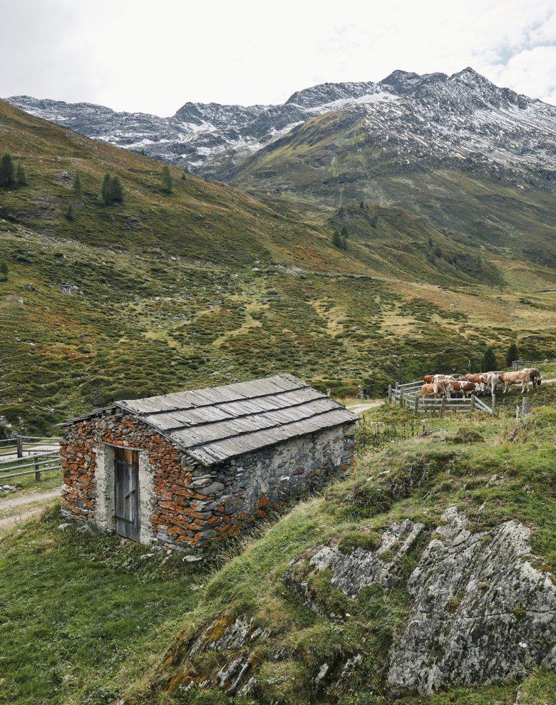 Die Jagdhausalm in Osttirol. Wo es kein Holz gab, musste man Steine nehmen.