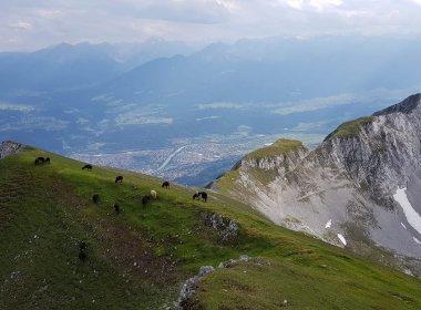 Ausblick von der Mandlspitze, Julia Müller
