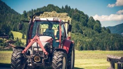 Traktor, © Prantlhof
