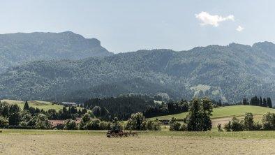 Naturnah - Den Sommer im Riedl erleben, © (c) FlorianEgger