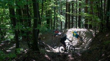 Arzler Alm Trail, © Tirol Werbung/Peter Neusser