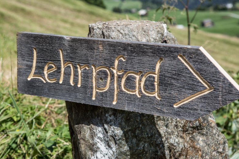 Wildkräuterlehrpfad in Fiss. Foto: Andreas Kirschner