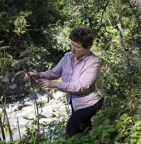 Elisabeth Maaß vom Kräuterbauernhof Sagenschneider's, © Tirol Werbung/Lisa Hörterer