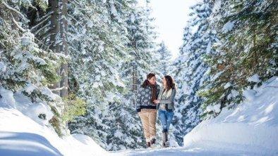 Winterwandern, © Olympiaregion Seefeld