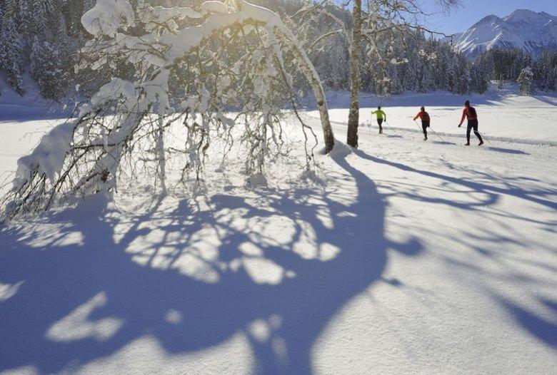 Langlaufen bei Seefeld. (Foto: Tirol Werbung, Josef Mallaun)