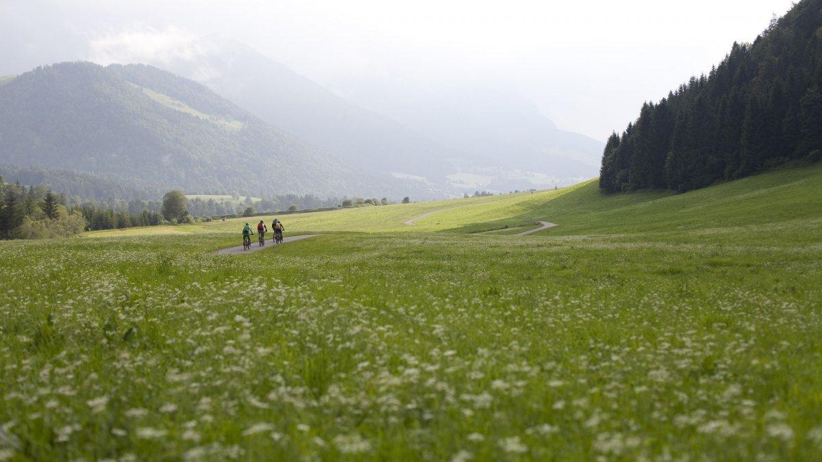 Radfahren in der Region Kaiserwinkl, © Tirol Werbung/Oliver Soulas