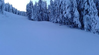 Winter, © Winterlandschaft im Schigebiet