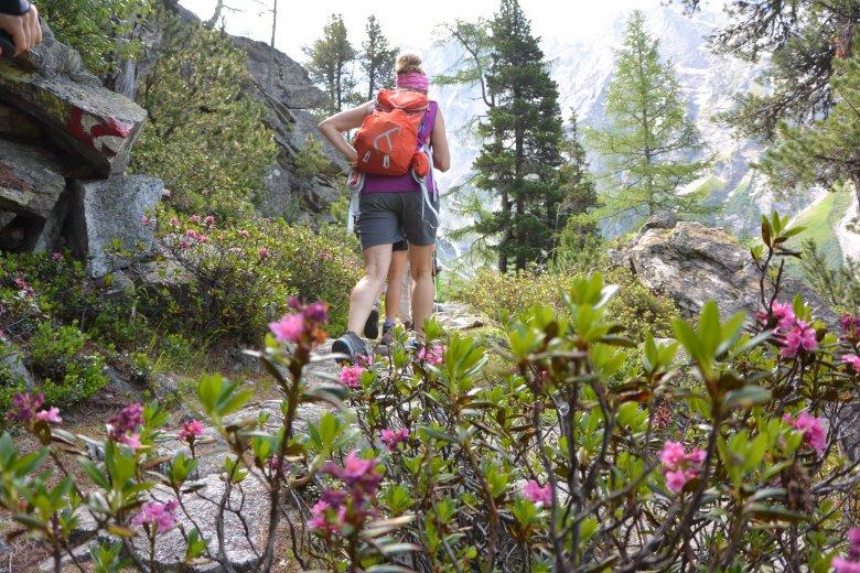 Der Weg zur 2.324 Meter hoch gelegenen Geraer Hütte im Valsertal zählt zu den flachsten Hüttenzustiegen Tirols. Dennoch überwinden Wanderer dabei insgesamt rund 1.000 Höhenmeter.