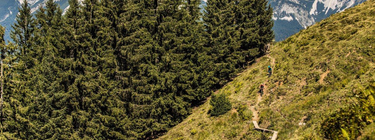 Trailbiken in den Kitzbüheler Alpen, Mountainbiken in Tirol, © Eye5/Carlos Blanchard