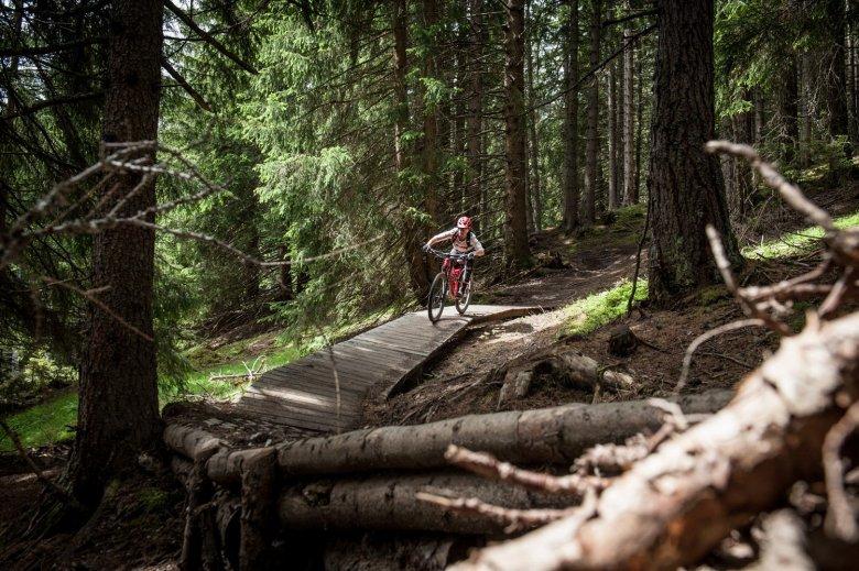 Immer wieder tauchen Holzüberfahrten im Wald auf. Fotos: Rene Sendlhofer-Schag/www.bikefex.at