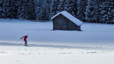 Langlaufen entlang der Blusenrunde, © TVB Osttirol