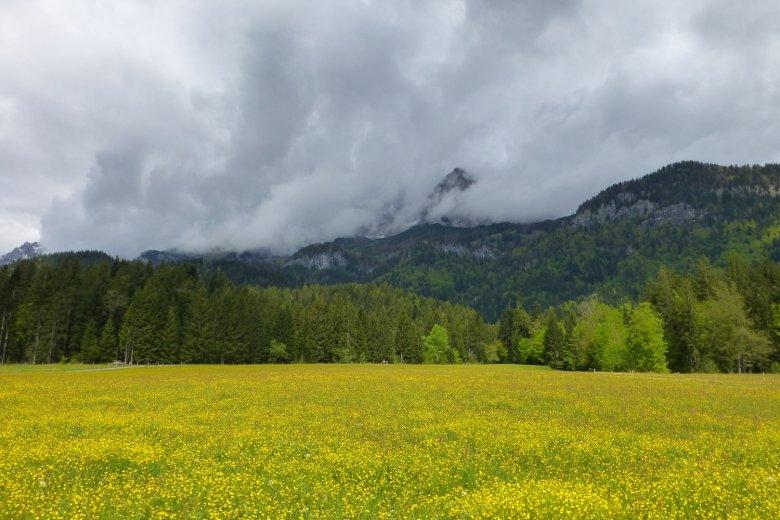 Am Jakobsweg Tirol zwischen St. Johann und Going