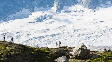 Beim hochalpinen Zillertaler Steinbockmarsch bewältigen die Teilnehmenden 1.870 Höhenmeter, © Norbert Freudenthaler
