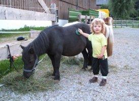 Pony am Martlerhof, © Urlaub am Bauernhof