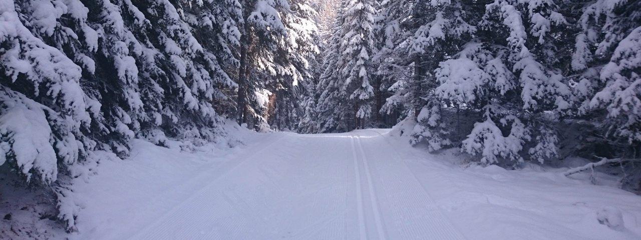Langlaufen entlang der Romantikloipe, © TVB Osttirol/Eva Oberhauser