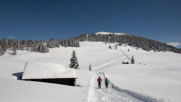 Unterwegs am Dorfberg, © Tirol Werbung Frank Stolle