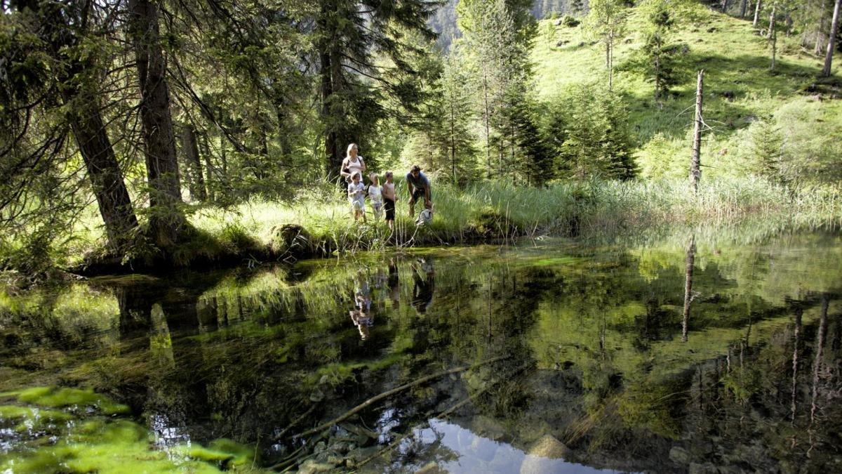 Teile des Ehrwalder Beckens, einst eine große Moorlandschaft, sind seit Jahrzehnten stehen seit Jahrzehnten unter Naturschutz. Dort leben etliche vom Aussterben bedrohte Tier- und Pflanzenarten., © Tiroler Zugspitz Arena