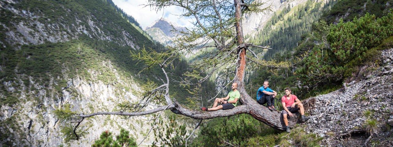 Adlerweg-Etappe 18, © Tirol Werbung/Dominik Gigler