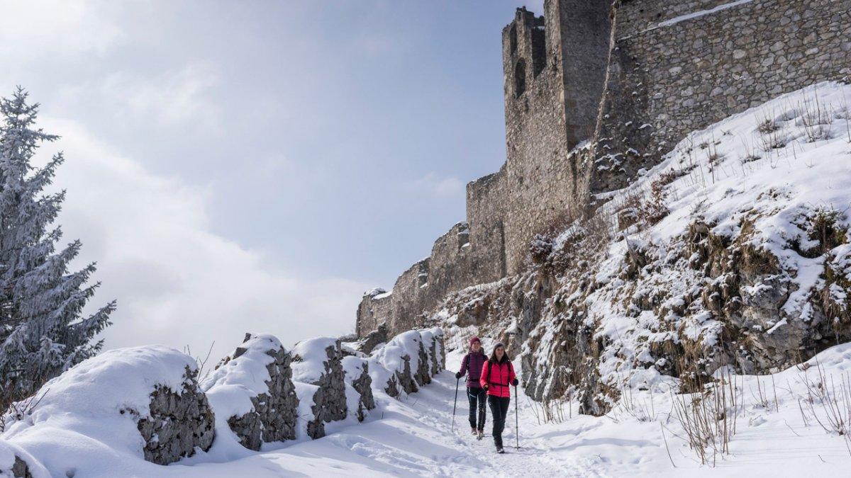 Winterwandern an der Ruine Ehrenberg