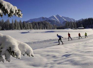 Die schönsten Loipen in Tirol