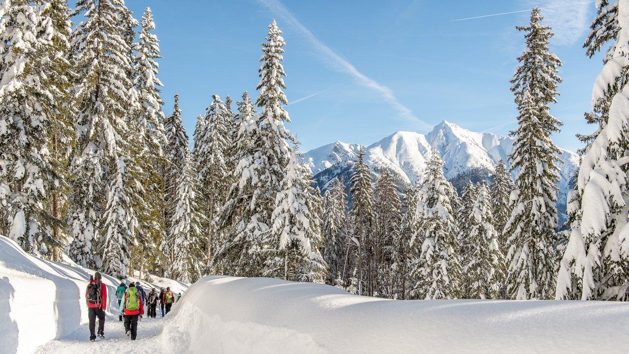 Winterwandern in Seefeld, © TVB Olympiaregion Seefeld / Johannes Geyer
