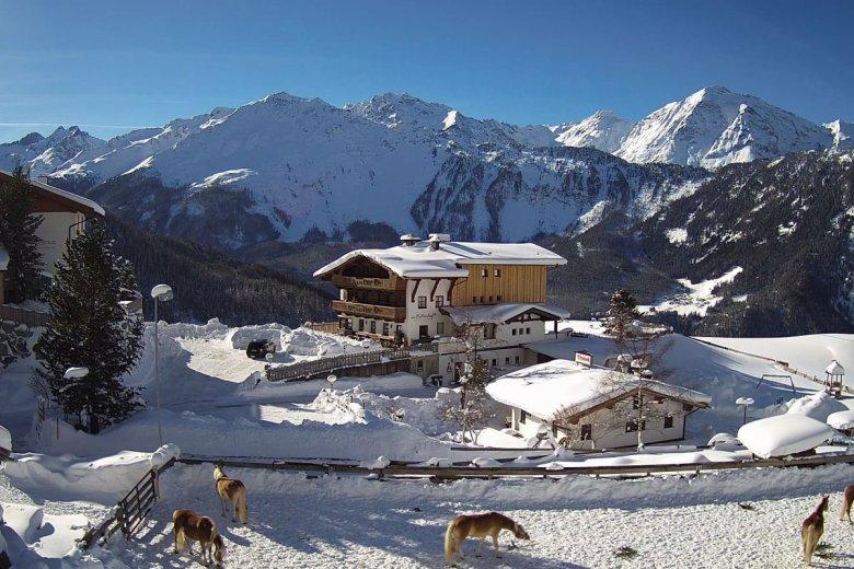 Umgeben von den hohen Gipfeln der Ötztaler Alpen: Der Veitenhof in Niederthai.