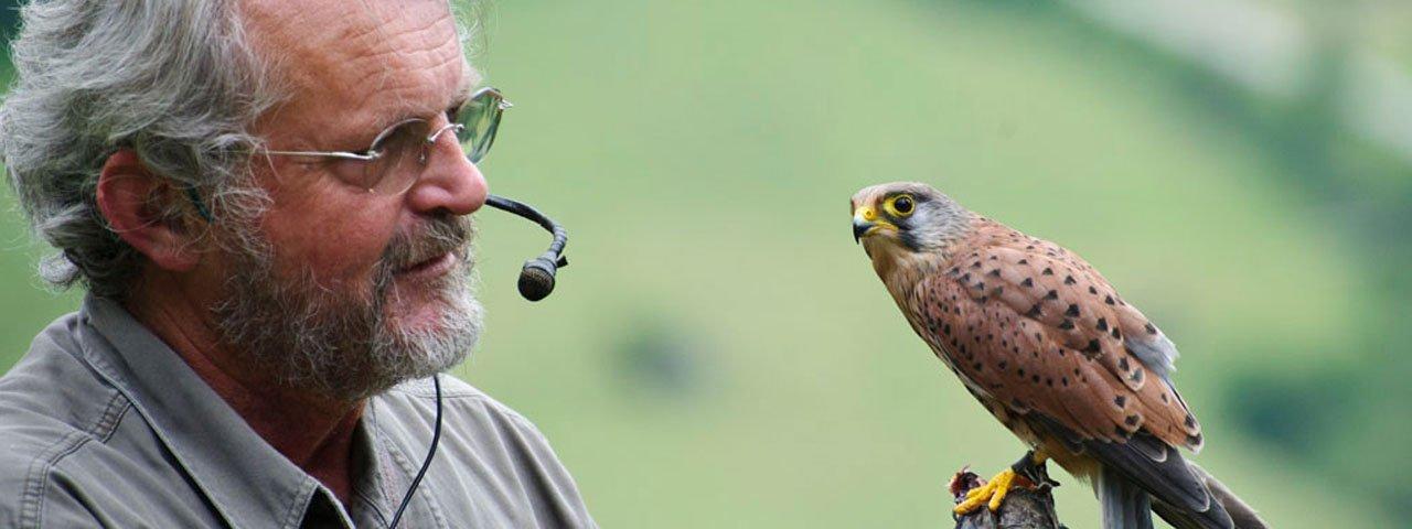 Greifvogelpark Telfes im Stubai, © Greifvogelpark Telfes