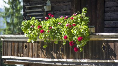 Blumen Balkon