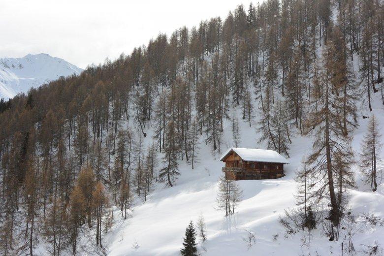 Erster Tag, Skitour zum Gaishörndl: Die Ruschletalm versteckt sich am Waldrand.