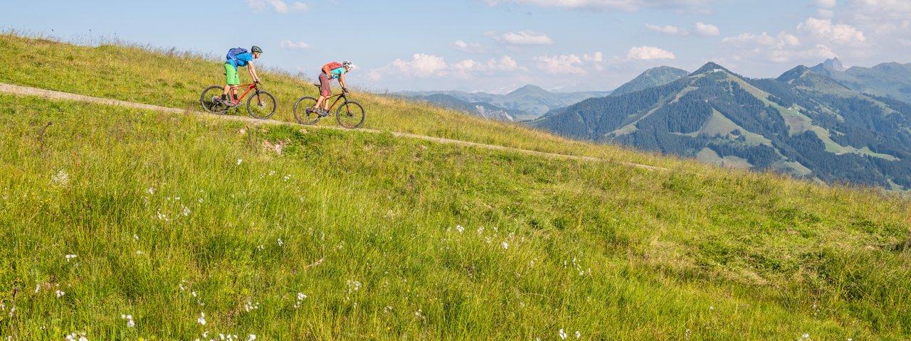 Mountain bike ride on the Hohe Salve mountain, © Norbert Eisele-Hein