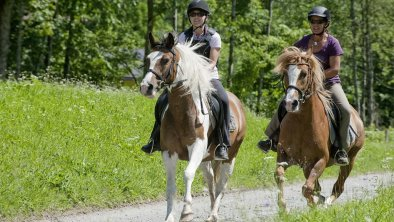 Go Carts 2011 010