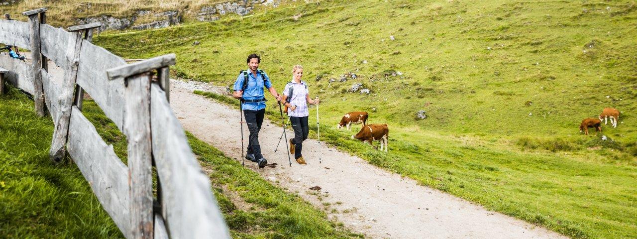Wandern in den kitzbüheler Alpen, © Mirja Geh/Eye 5