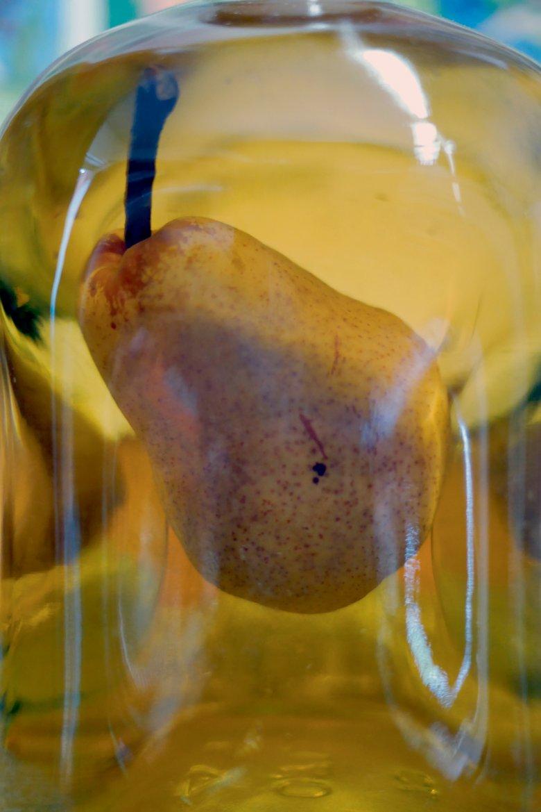Flaschengeist: Diese Birne ist langsam in die Flasche hineingewachsen, die man an den Baum gehängt hat. Später wurde dann mit Birnenbrand aufgefüllt.