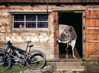E-Biken in den Kitzbüheler Alpen