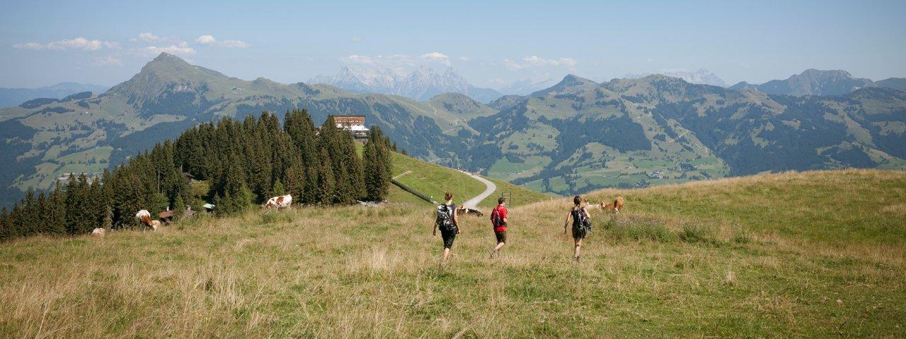 Wandern am Hahnenkamm in Kitzbühel, © Tirol Werbung/Jens Schwarz