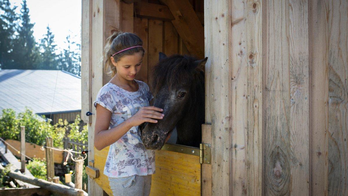 Auf den kleinen Pferden zu reiten, ist manchen Kindern die liebste Beschäftigung., © Tirol Werbung/Lisa Hörterer
