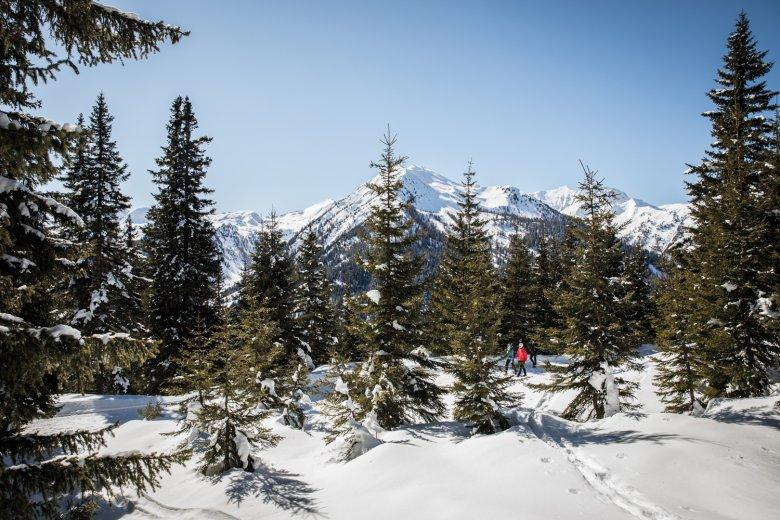 Die Steigung ist auf den Winterwanderwegen moderat, aus der Puste kommt man nur selten.