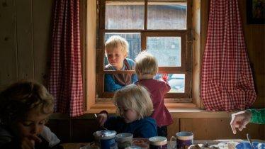 Urlaub am Bauernhof, © Tirol Werbung/Verena Kathrein