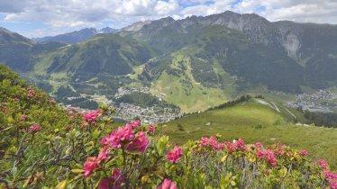 Alpenrosenweg St. Anton, © TVB St. Anton am Arlberg/Josef Mallaun