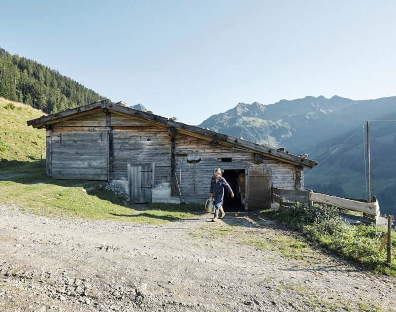 Weil früher im Tal nicht genug Futter gewonnen wurde, mussten die Bauern die Weidewirtschaft auf die Hochgebirge ausweiten.