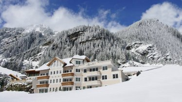 Alpenstern Winteransicht