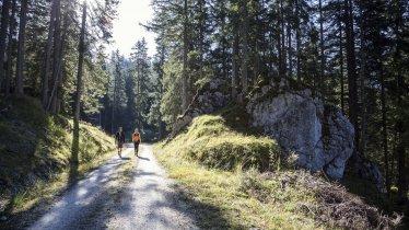 Wandern im Gaistal, © Tirol Werbung/Dominik Gigler