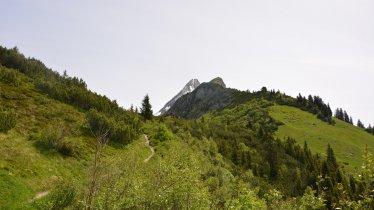 Bergmähderweg Brandberg bis zum Kolmhaus, © Hochgebirgs-Naturpark Zillertaler Alpen